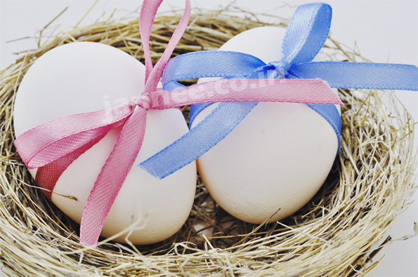 Role of Egg Donor in Infertility treatment